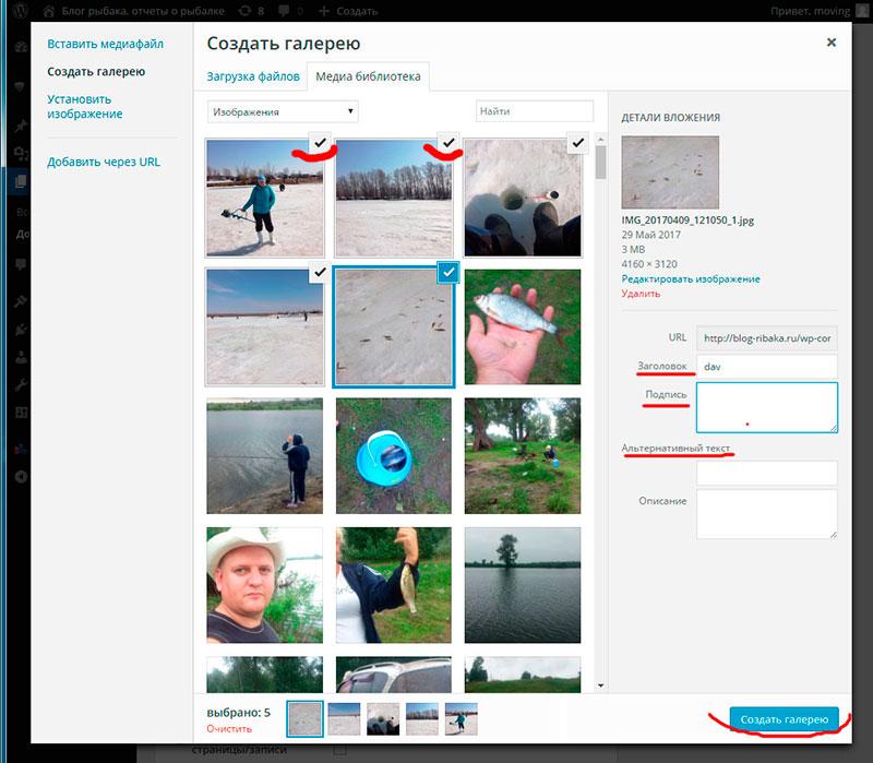 Как сделать фото галерею на своем сайте
